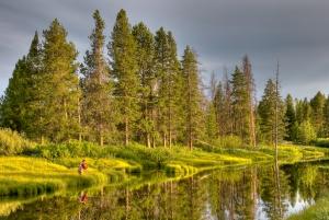 Duck Creek, Yellowstone Park, 1