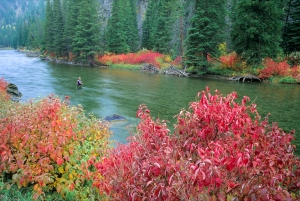 Gallatin River, Montana, 1