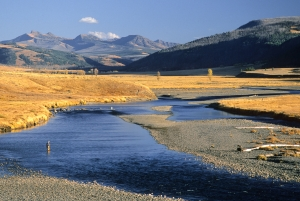 Lamar River, Yellowstone Park, 1