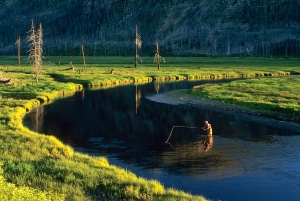 Madison River, Yellowstone Park, 5