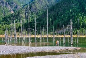 Quake Lake, Montana, 1