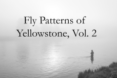 Fly Patterns of Yellowstone, Vol. 2