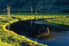 Madison River, Yellowstone Park, 5