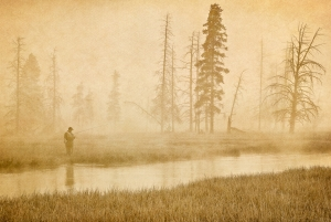 Iron Creek, Yellowstone Park