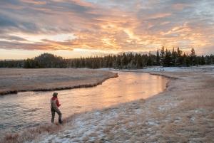 Nez Perce Creek, Yellowstone Park