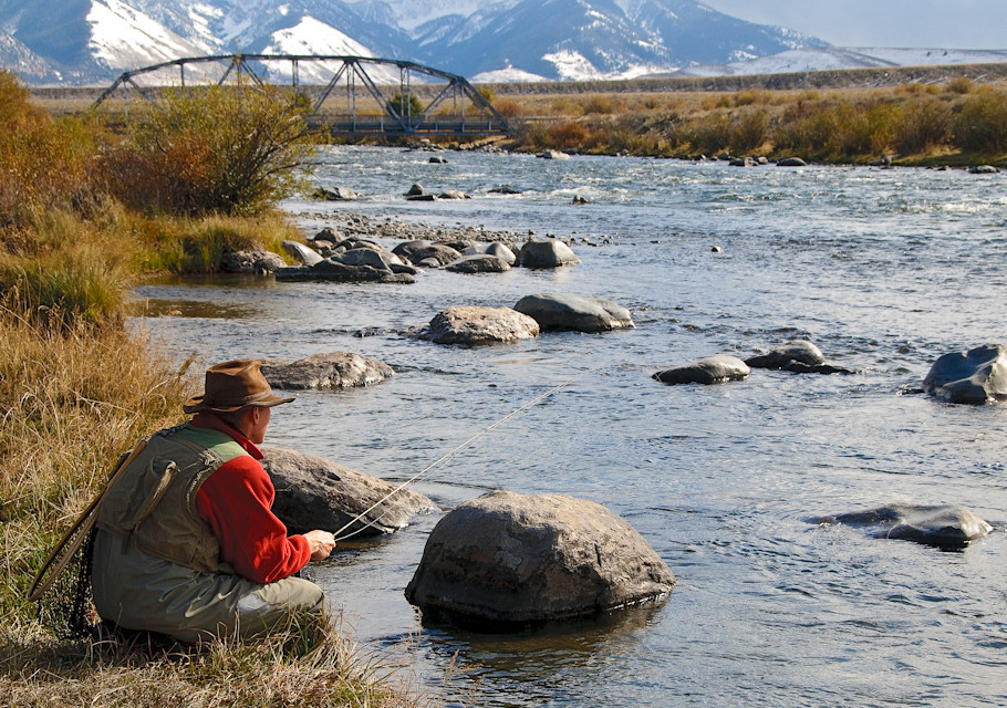 Madison river baetis for Madison river fly fishing